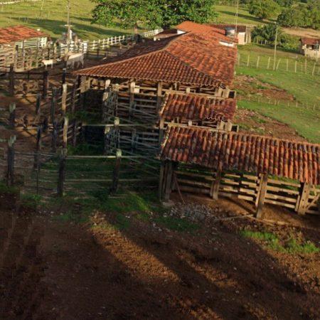 Hotel Fazenda Guimaraes - Amelia Rodrigues BA (108)